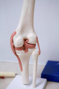 Cartilage Replacement & Joint Preservation